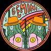 geminifinds